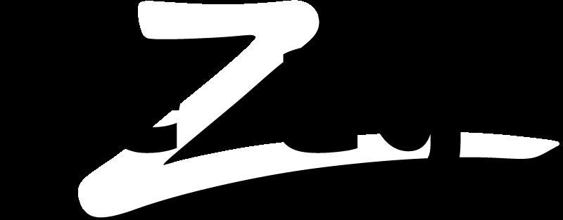 Logo Pezag Elektro AG